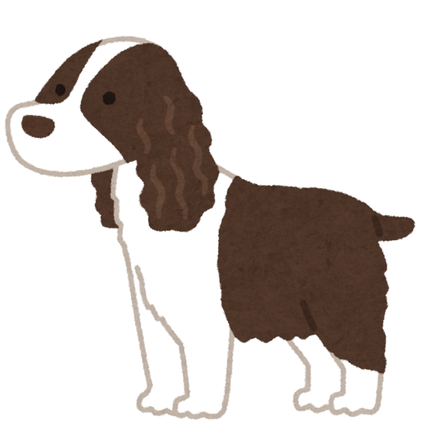 dog_english_springer_spaniel.png