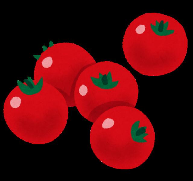 mini_petit_tomato.png