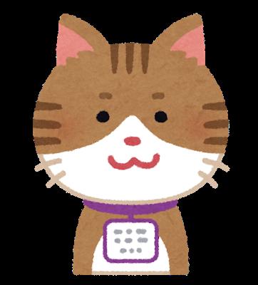 pet_maigofuda_cat.png